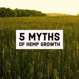 Myths about Hemp CBD