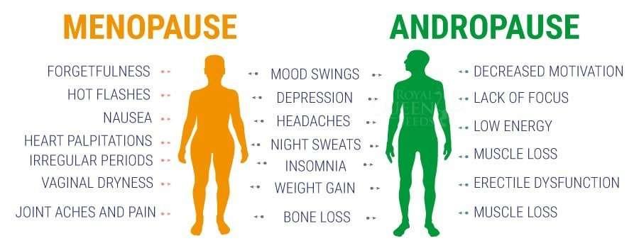 does CBD effect your hormones